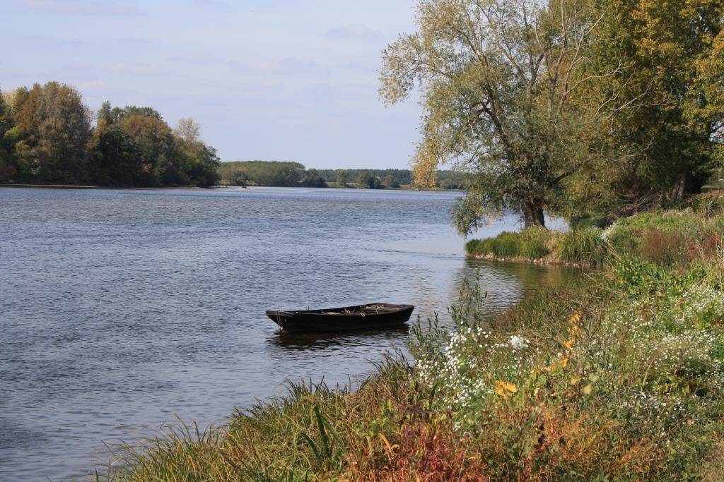 Loire im Herbst
