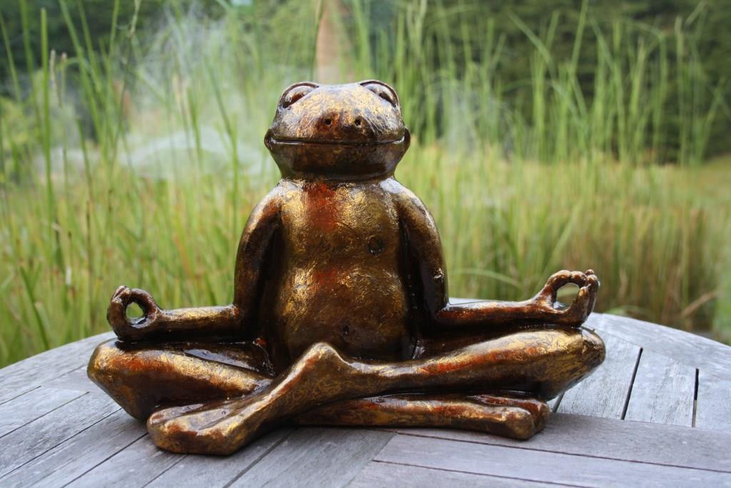 Der Yoga-Frosch