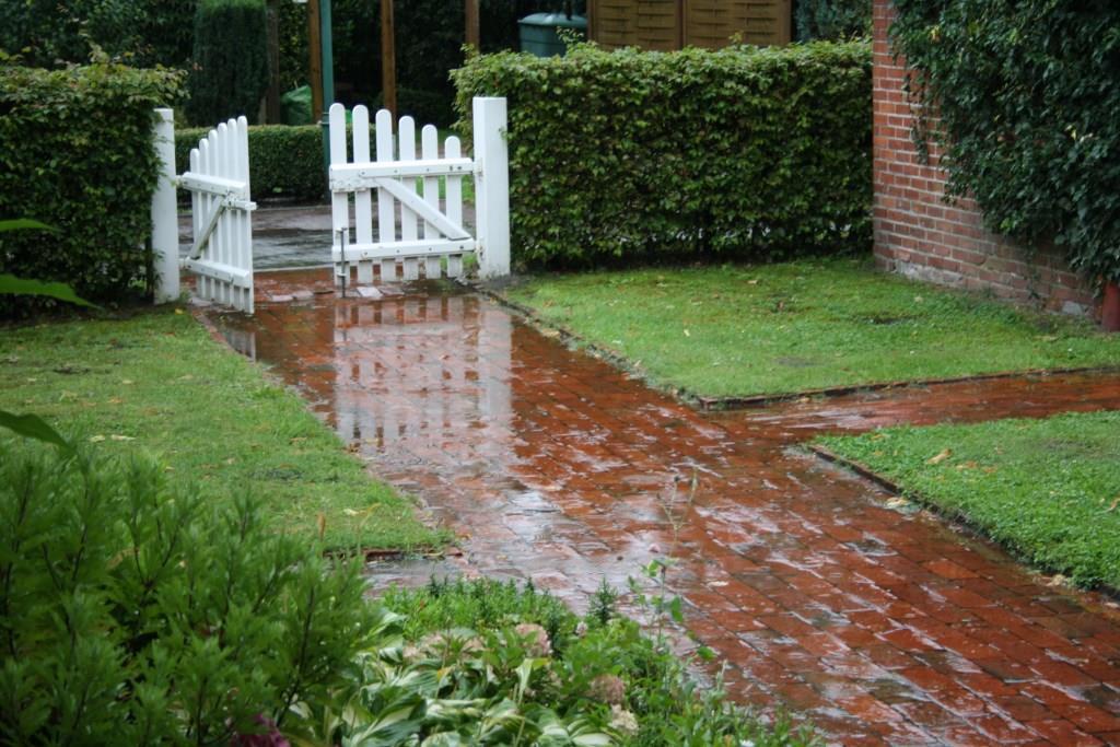 """""""Nortmoorer Regen"""""""
