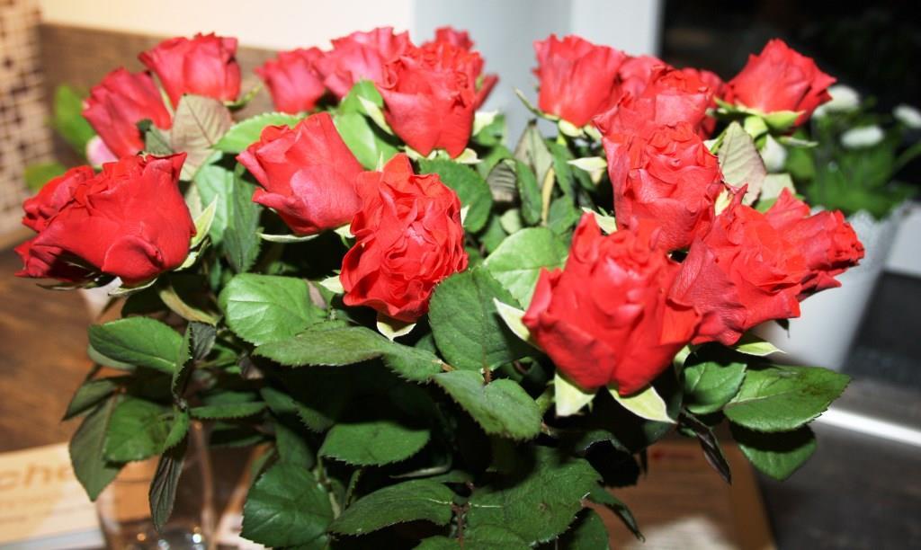 Eine Rose für jeden Gast