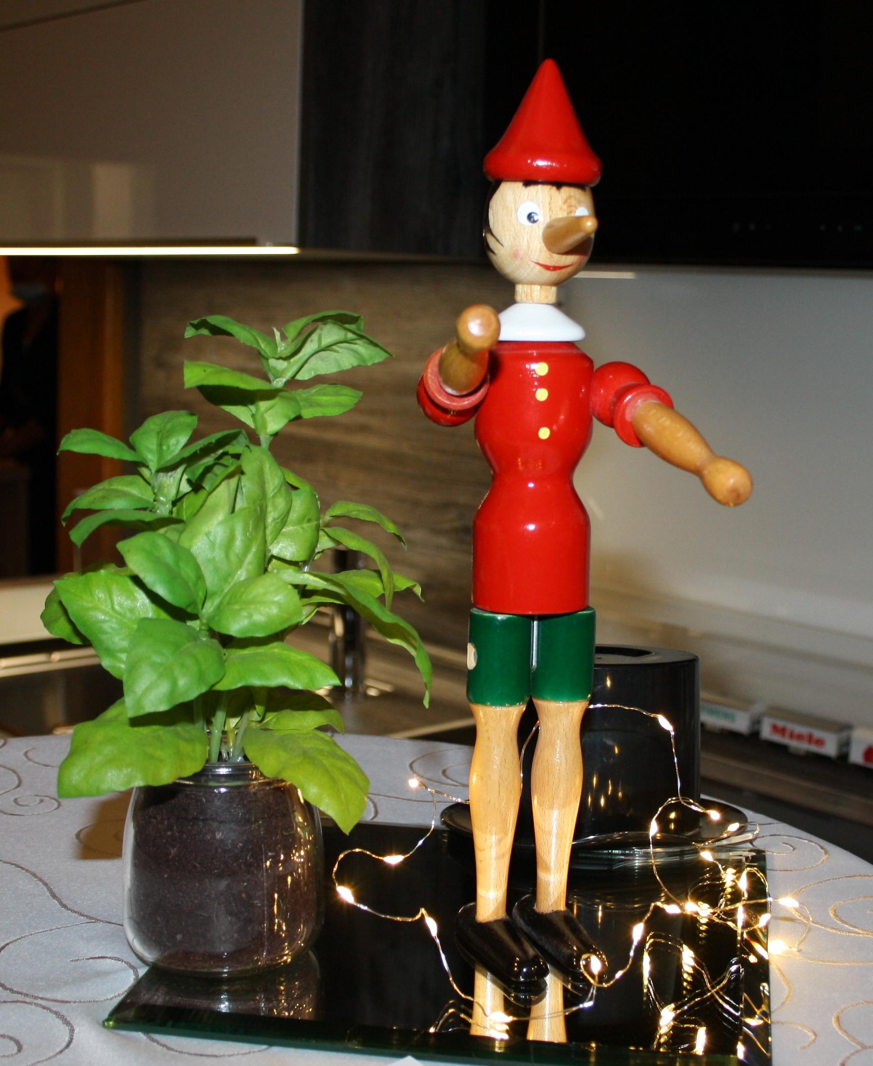 Pinocchio - unser Maskottchen aus Luca
